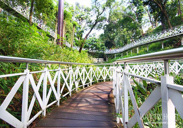 【嘉義景點】竹崎親水公園(天空走廊) @ 穿梭森林翱翔空中步道